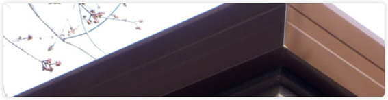 seamless low profile fascia gutter